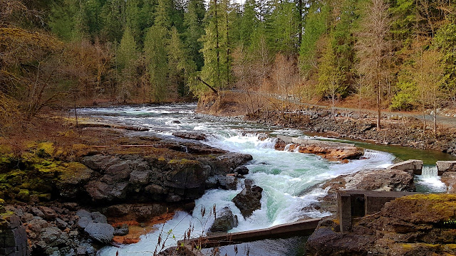 Stamp River on Vancouver Island...