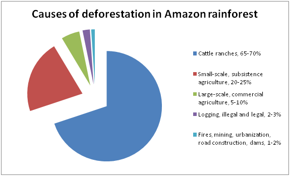Deforestation in the Amazon: September 2013