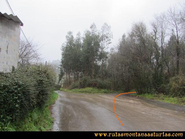 Prado Marqués: Desvío a la derecha