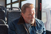 Arnold Schwarzenegger in Aftermath (2017)