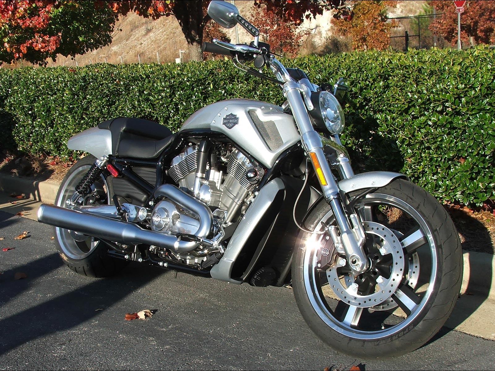 Harley Davidson: Pic New Posts: Wallpaper V-rod