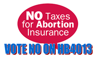 Vote NO on HB4013