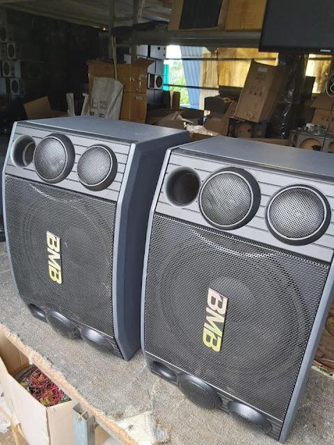 Loa BMB CSV 450SE giá rẻ tại hà nội