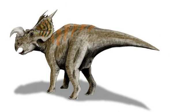 einiosaurus-dinasour-أينياسوراس-ديناصور