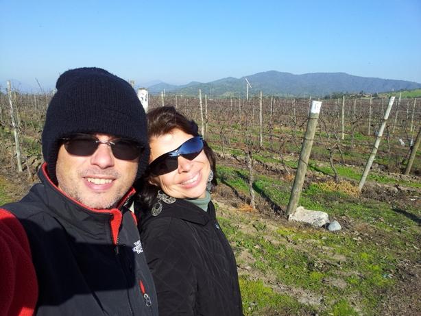 passeando pelas parreiras da vinícola Casas del Bosque, Chile