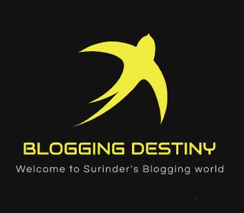 BloggingDestiny