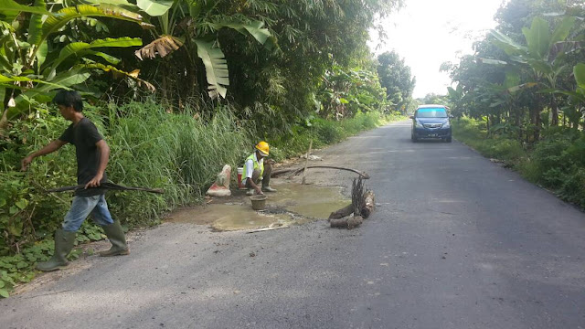 Jaga Aset Daerah, Camat SP Padang Bentuk Satgas Antisipasi Jalan Berlubang