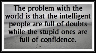 english quote about intelligence