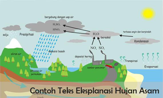 Contoh Teks Eksplanasi Hujan Asam beserta Strukturnya