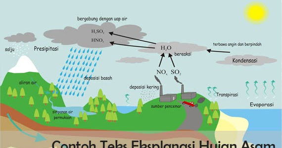 5 Contoh Teks Eksplanasi Hujan Asam beserta Strukturnya