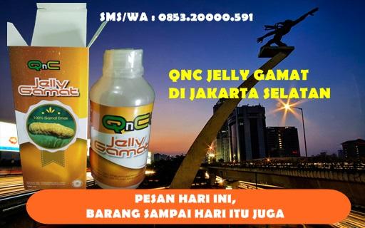 Penjual QNC JELLY GAMAT Di Jakarta Selatan
