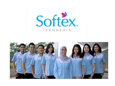 Lowongan Kerja SMA/SMK/D3/S1 PT Softex Indonesia