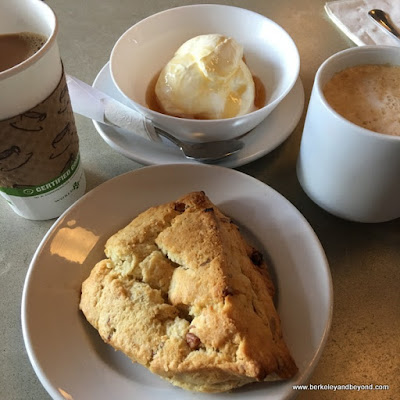 housemade yogurt and scone at Way Station Brew in Berkeley, California