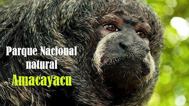 www.viajesyturismo.com.co810x456