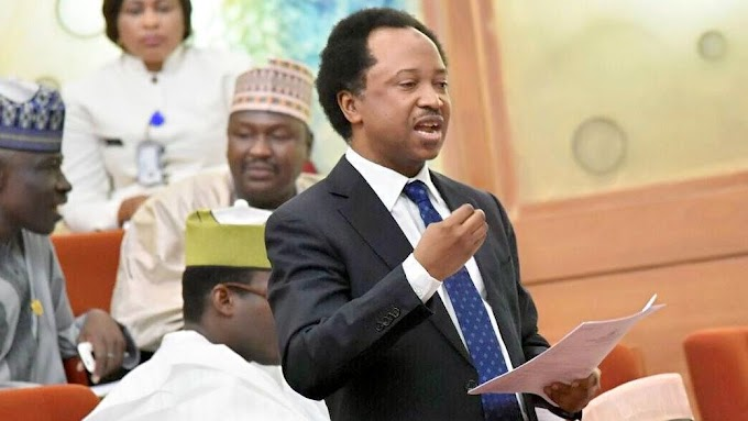War Between Senator Shehu Sani And  Buhari