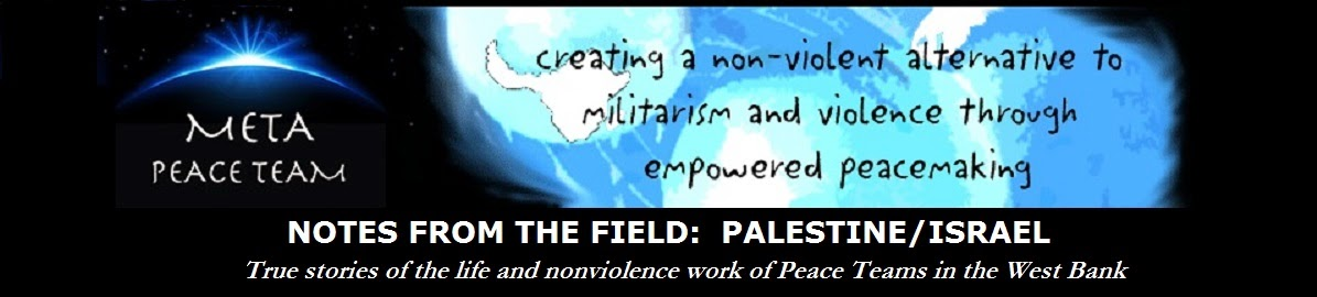 MPT Peace Team Reports: Palestine/Israel