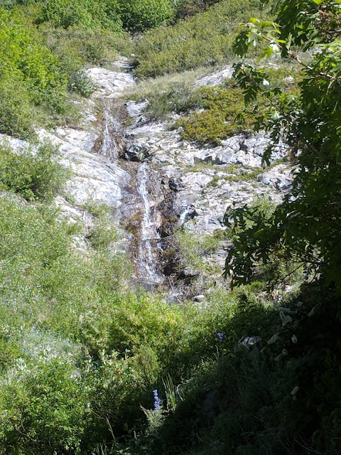 Waterfall on Dry Creek Trail between Granite Flats and Alpine
