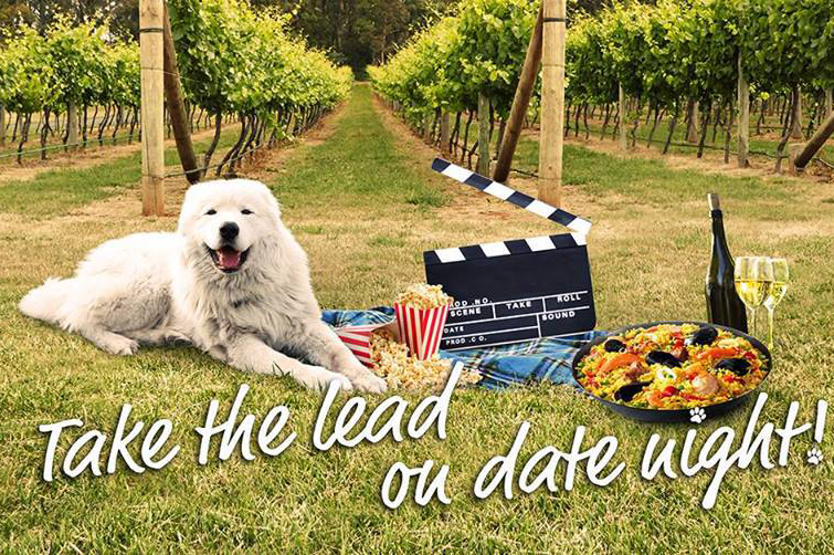 Dating dog dog lover lover blogspot com
