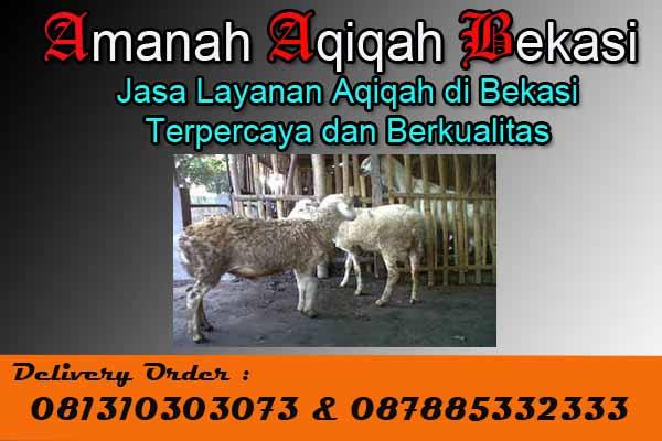 Kirim_Paket_Aqiqah_Tambun Selatan