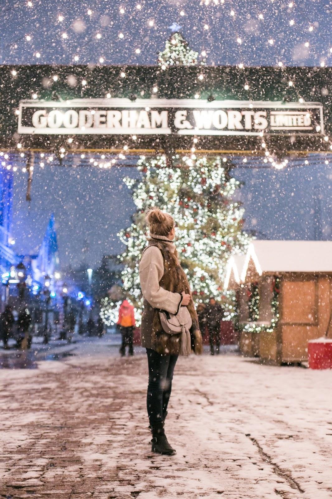 Bijuleni | Christmas Market in Toronto