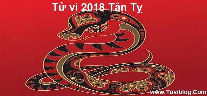 Xem tuoi Tan Ty nu mang nam 2018