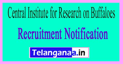Central Institute for Research on Buffaloes CIRB Recruitment Notification 2017