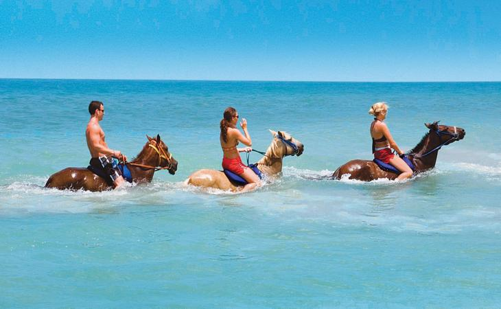 You can even swim with the horses on Zakynthos island!