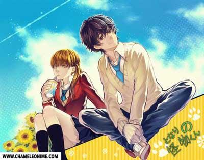 rekomendasi anime genre romance school terbaik terpopuler