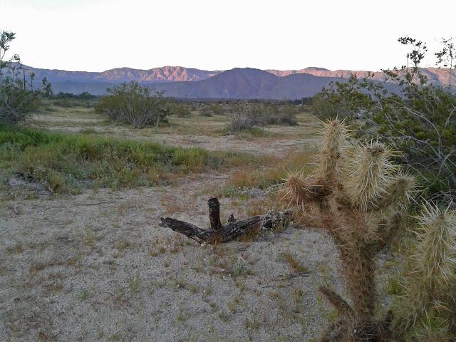 Sunset in Borrego Springs