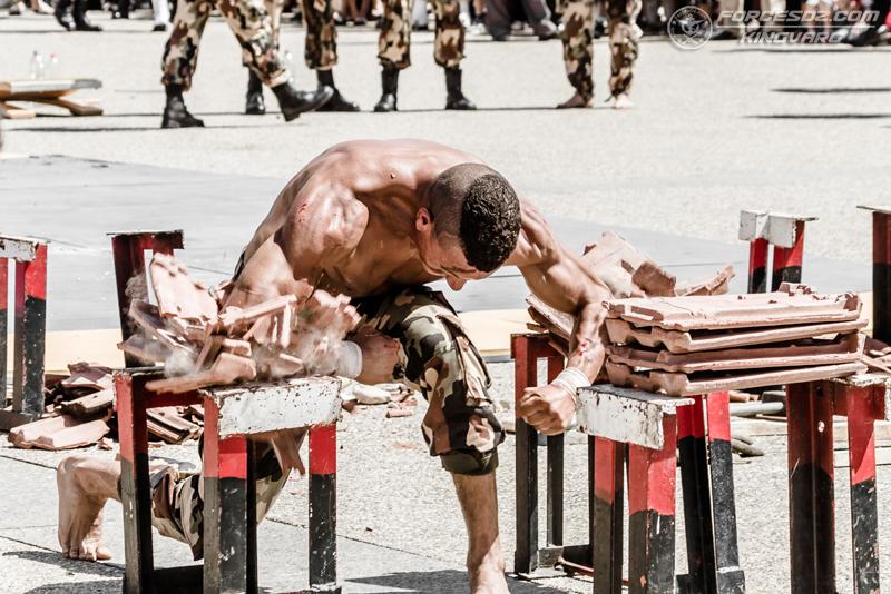 موسوعة الصور الرائعة للقوات الخاصة الجزائرية - صفحة 62 IMG_5628