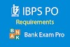 Institute of Banking Personnel Selection (IBPS PO)