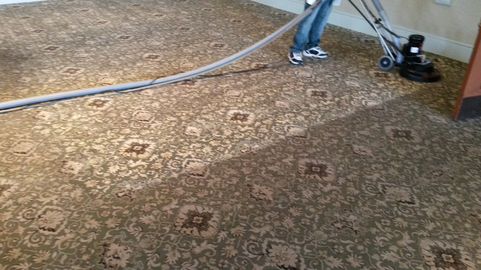 Bayville Carpet Cleaning In Bayville Nj