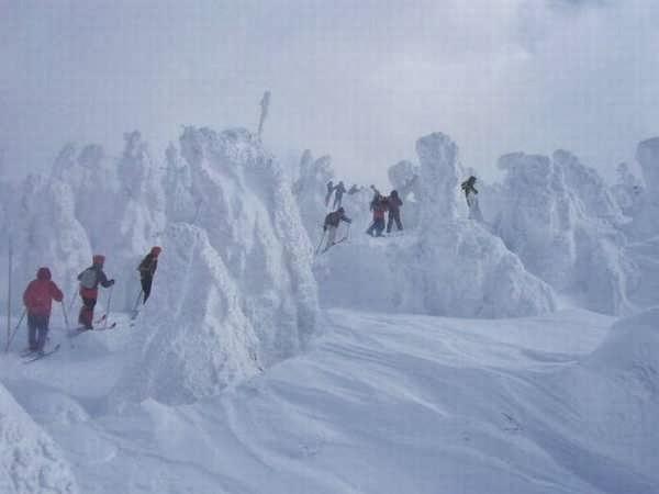 amazing snow wallpaper joseph - photo #2