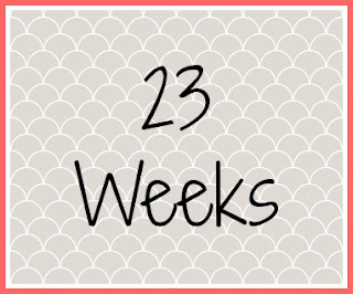 Twin Pregnancy Diary - 23 Weeks An Early Update