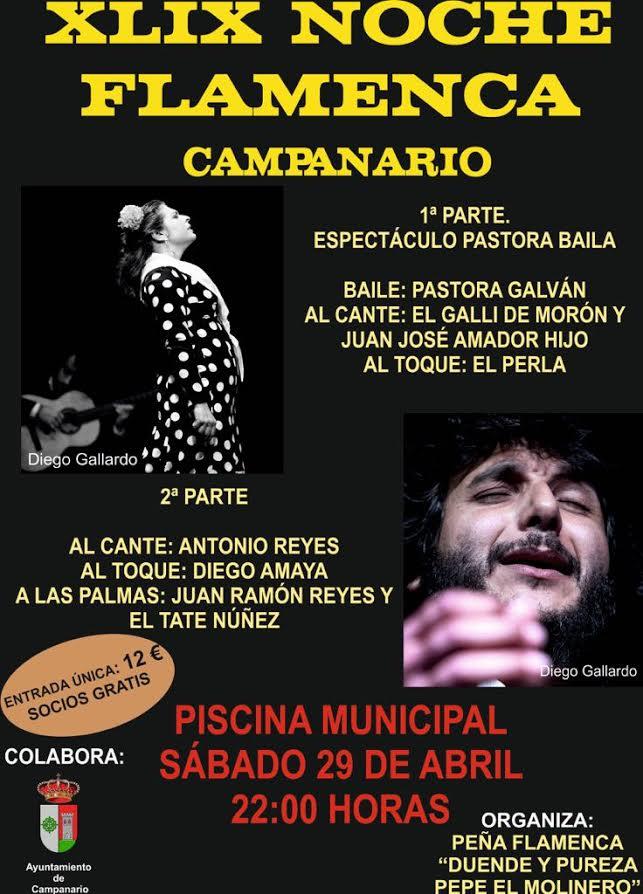 Festivales flamencos xlix noche flamenca campanario for Piscina 29 de abril telefono