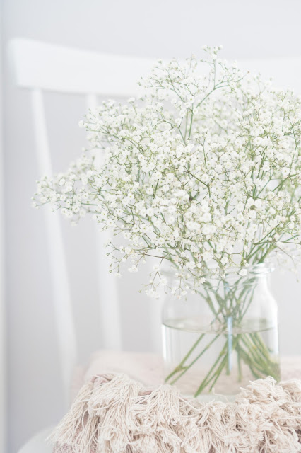 Flower of the month {Baby`s Breath} ~ Kvet mesiaca {Gyspomilka}