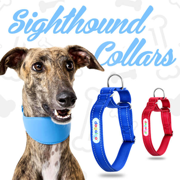 whippet-and-greyhound-collars