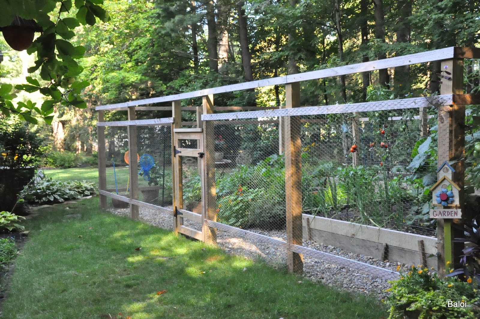 Beautiful home vegetable gardens - Pin The Vegetable Garden Fence L