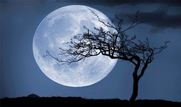 moon acadia national park moon handbooks