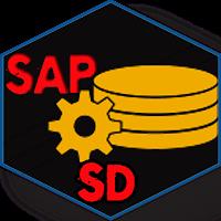 Learn SAP SD