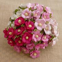 https://www.essy-floresy.pl/pl/p/Kwiatki-Sweetheart-Blossom-mix-bialo-rozowy/942
