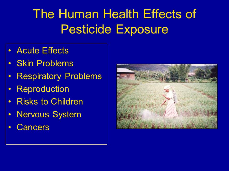 pesticides and human health in california Known groundwater contaminants, as designated by the state of california (for actively registered pesticides) or from historic groundwater monitoring records (for banned pesticides) pesticides with high acute toxicity, as designated by the world health organization (who), the us epa, or the us national toxicology program.