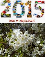 http://misiowyzakatek.blogspot.com/2015/05/rok-w-zdjeciach-maj.html