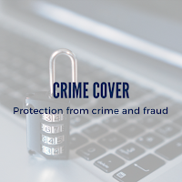 Protect Your Business with Crime Cover