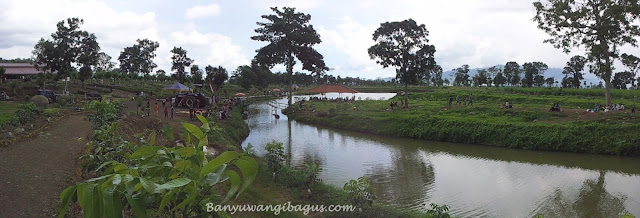 Wisata Banyuwangi.
