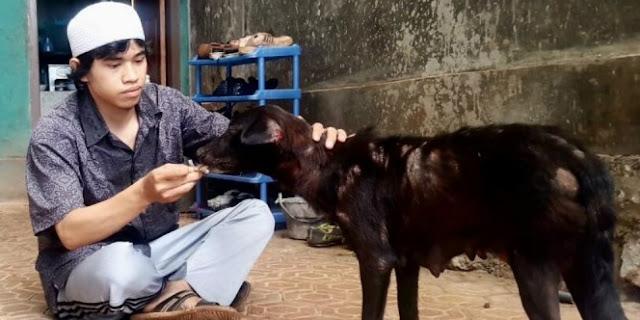 Heboh! Pria Muslim Berpeci Suapi Anjing Yang Sakit