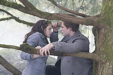 A confrontation between Edward and James in Twilight 2008 movieloversreviews.filmiinspector.com