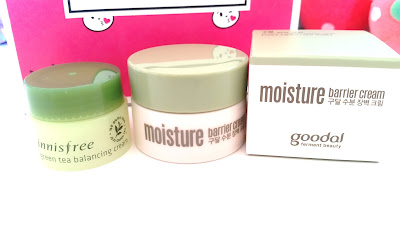 Innisfree Green Tea Balancing Cream and Goodal Moisture Barrier Cream samples