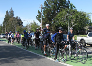 Group of cyclists stopped in a green bike lane, waiting for a green light, Cupertino, California.