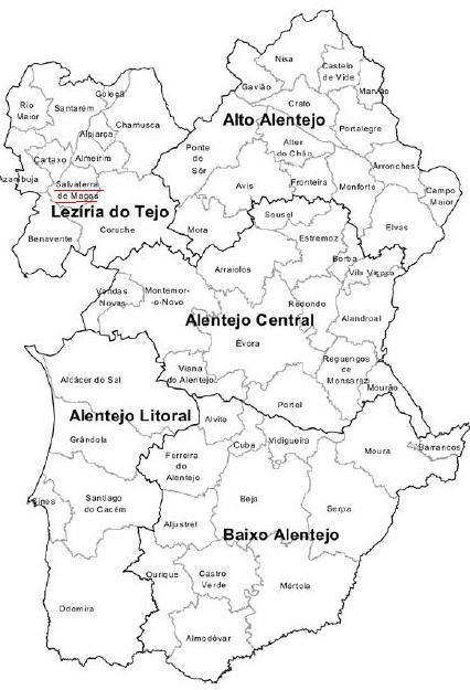 mapa alentejo concelhos Fazer por Salvaterra, Fazer por Todos Nós: MAIS ALGUNS DADOS SOBRE  mapa alentejo concelhos